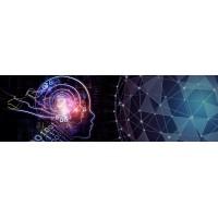 Основные аспекты сотрудничества компаний Hikvision и Scylla Technologies