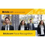 Новые продукты Brickcom