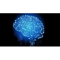 Интеграция искусственного интеллекта в камеры видеонаблюдения